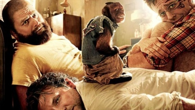 zach galifianakis hangover 2. Continue reading #39;THE HANGOVER